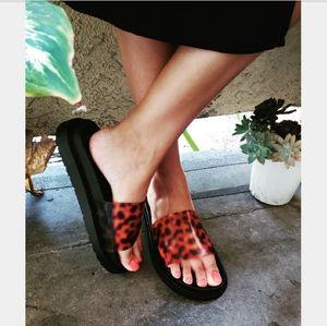 The Tropics collection// leopard slide
